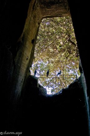 Cuma - Parco Archeologico Sharon Espo Photo