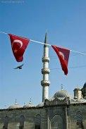 istanbul-sharonespoph-11